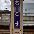 Photos: ちとせ