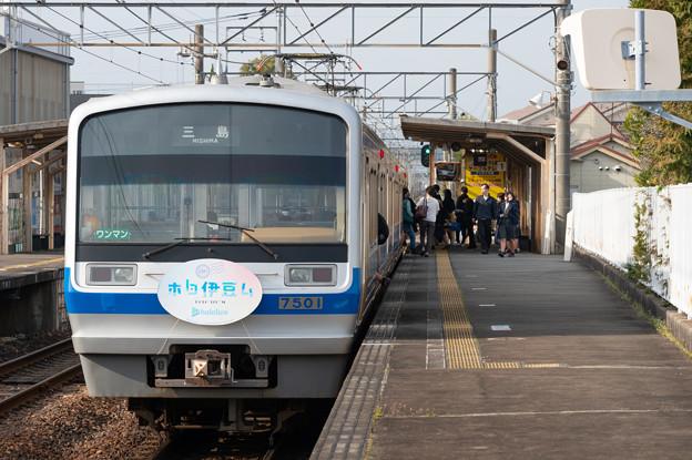 005601_20210319_伊豆箱根鉄道_伊豆仁田