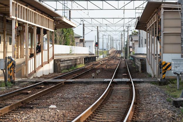 005598_20210319_伊豆箱根鉄道_伊豆仁田