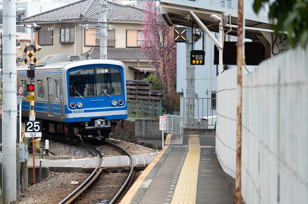 005651_20210320_伊豆箱根鉄道_緑町
