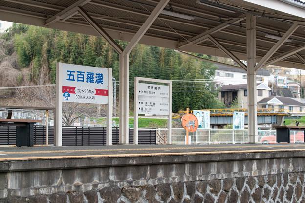 005660_20210320_伊豆箱根鉄道_五百羅漢