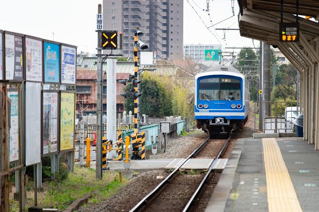 005657_20210320_伊豆箱根鉄道_井細田