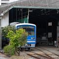 005706_20210320_伊豆箱根鉄道_大雄山