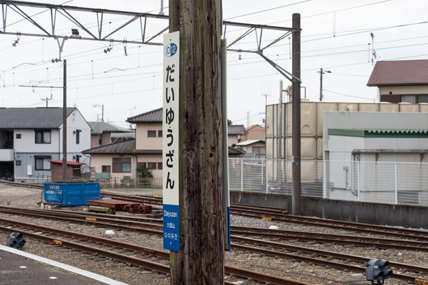 005704_20210320_伊豆箱根鉄道_大雄山