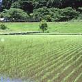 005740_20210523_JR伊勢鎌倉