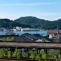 Photos: 006045_20210724_柴山