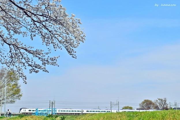 春色沿線(46)