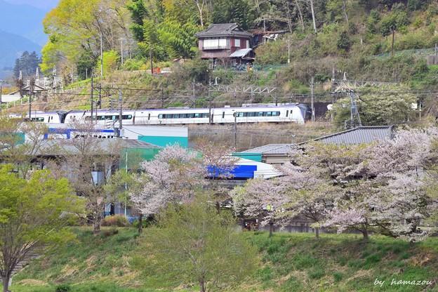 Photos: 春の山郷