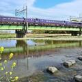 Photos: 春色沿線(50)
