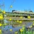 Photos: 春の四季島