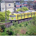 Photos: なの花電車