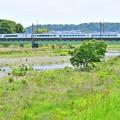 新緑の河川敷