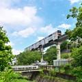 Photos: 新緑モノレール