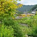 Photos: 秩父の山郷