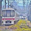 Photos: 盛夏の陽炎