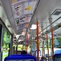 大垂水峠をバスで