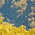Photos: 初秋の麓