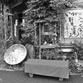 Photos: 通りすがり