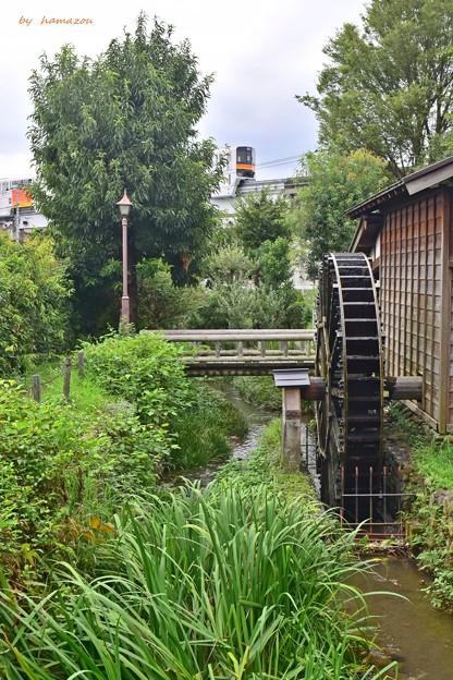雨上がりの水車小屋