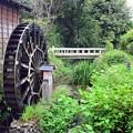 Photos: 雨上がりの水車小屋