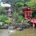 Photos: 初秋の弁天池