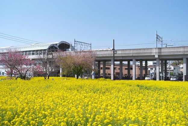 川和町駅の直ぐ傍です