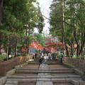 円覚寺ホントの入口