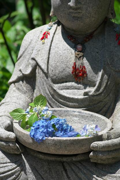 花を想って