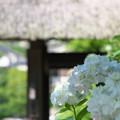 東慶寺を後に