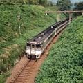 関西本線を行くキハ181系(回9243D)