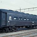 IMGP3285