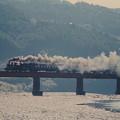 大井川第一鉄橋を行くC12 164