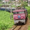 Photos: 鹿児島本線を行く下り「なは」