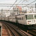 上野-東京ラインを行く「湘南ライナー10号」回送(後追い)