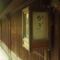 Photos: 絞り開放(?)の作例