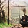 家山駅を発車するC11227