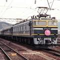 Photos: 19970319トワイライトエクスプレス@敦賀