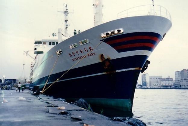 Photos: 198609中旬「おがさわら丸」(先代)@日の出埠頭