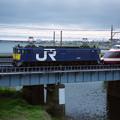 JR貨物の試験塗装機(EF65 1059)