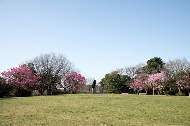 01本牧山頂公園【公園の眺め】1