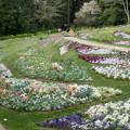06里山ガーデン【大花壇の眺望】3