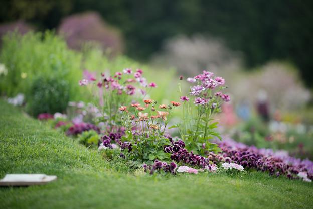 12里山ガーデン【花壇の様子】2