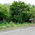 01長尾山妙楽寺【駐車場からの眺め】1