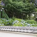 03長尾山妙楽寺【駐車場からの眺め】3