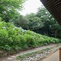18長尾山妙楽寺【本堂の眺め】2