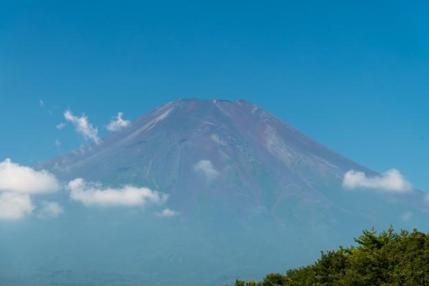 06富士五湖巡り【花の都公園:赤富士のアップ】