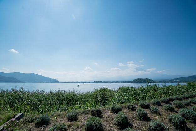 07富士五湖巡り【河口湖自然生活館から見た富士】