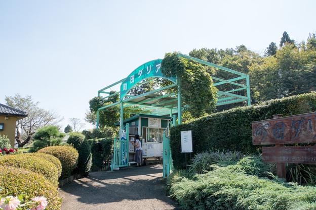 01町田ダリア園【入口】