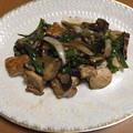 採れた、玉葱、茄子、ピーマンと鶏肉の味噌炒め