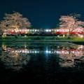 Photos: 飯給夜桜